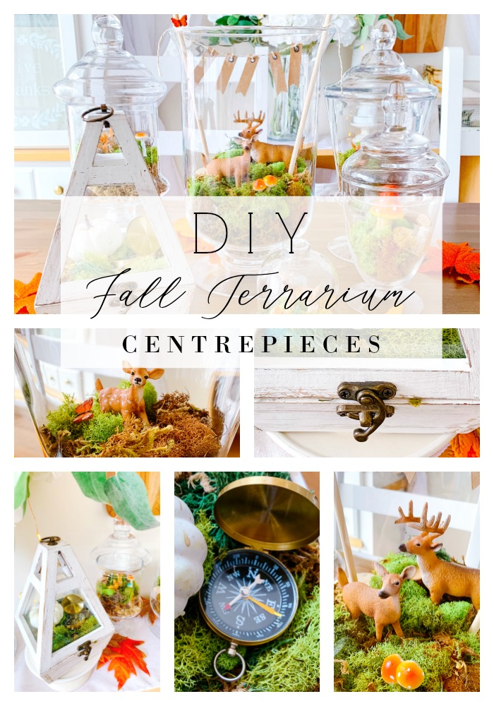 DIY FALL TERRARIUM CENTREPIECES