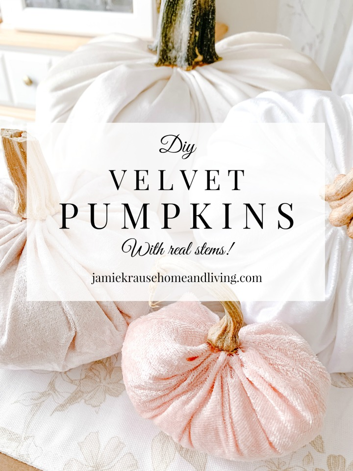 DIY VELVET PUMPKINS (WITH REAL STEMS!)